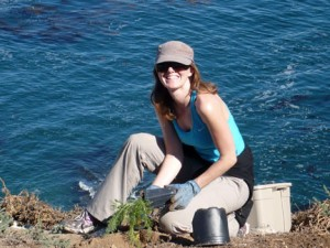 Photo showing volunteer planting on Santa Barbara Island.