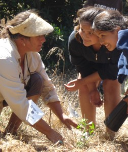 Karen Flagg of Growing Solutions shows Chumash youth how to plant native California coastal grasses to be used in traditional basket-weaving. (Growing Solutions)
